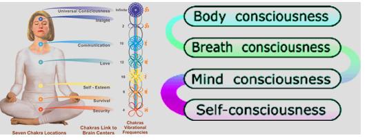 Chakra Mind-Body healing System